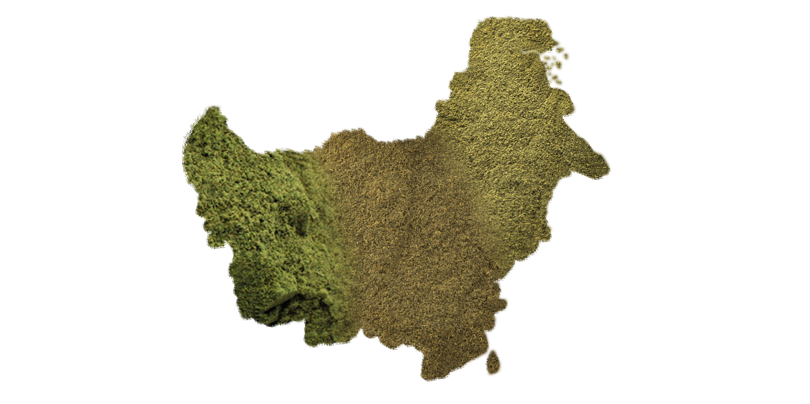 West Borneo Kratom