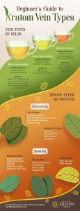Kratom Strains - Vein