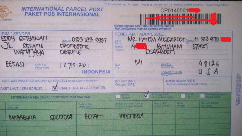 Shipping Kratom Borneo to Michigan, USA
